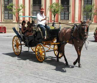 horse drawn cart in Spain